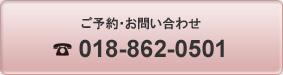 問い合わせTEL018-862-0501